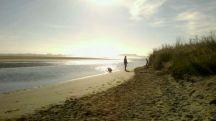 Southshore Spit Estuary Side