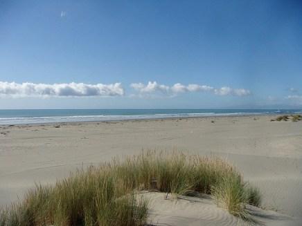 pines-beach_a88ffd87-6b8b-4de7-9549-857515f638cb