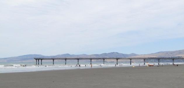 sustainable_coastlines-1356.jpg