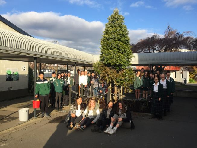 Burnside High School Environment Group Kauri Planting